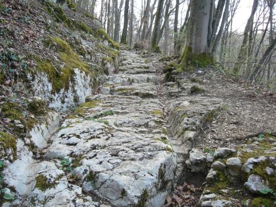 Römerweg bei Effingen