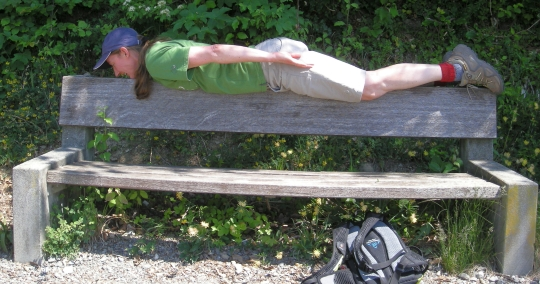 Brige Planking