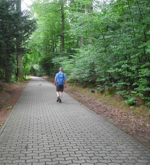Beim Tierpark Olderdissen in Bielefeld wird der Hermannsweg richtig hochwertig.
