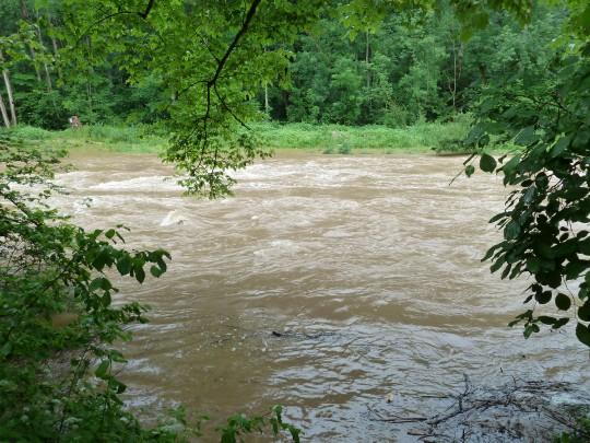 Hochwasser in der Wutach.