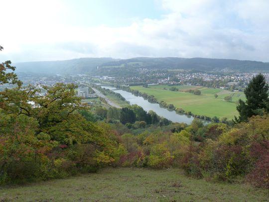 Blick auf den Neckar (1).