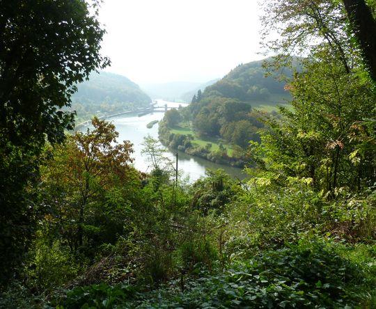 Blick auf den Neckar (2).