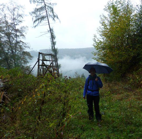 Nach dem Wildsaufang. Brige von vorne im Regen.